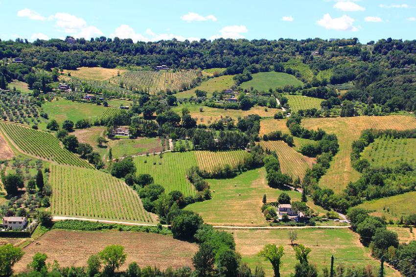 Umbria – no sea coast but great wines!