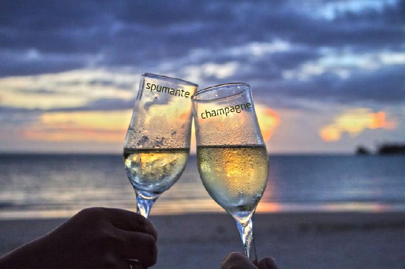 Spumante vs Champagne