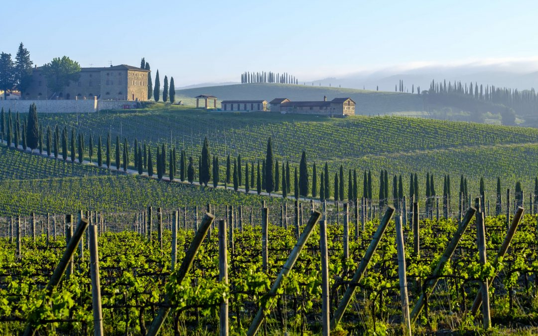 The Tuscan countryside: Siena, Pienza, and Montepulciano