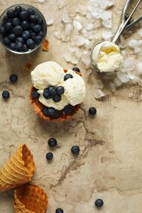 italian gelato: Vanilla ice cream with fresh blueberries,