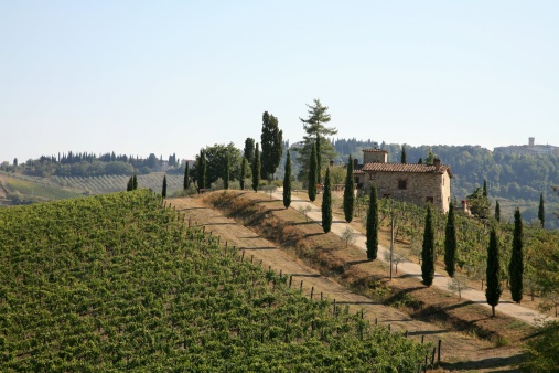 Italy, a Country of Wine and Ancient Traditions