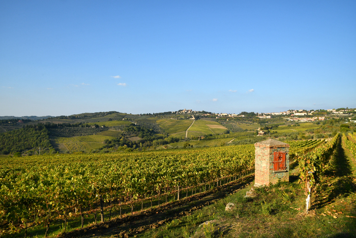 The Italy of Wine: Some of the Most Interesting Wineries in the Country